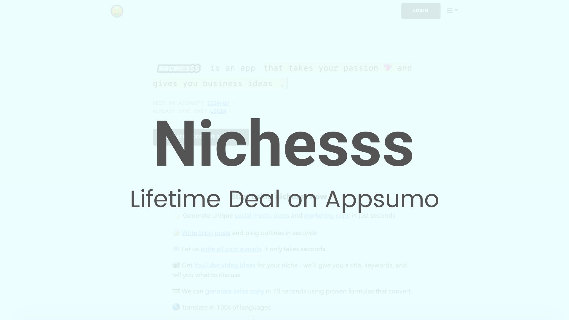 Nichesss Banner